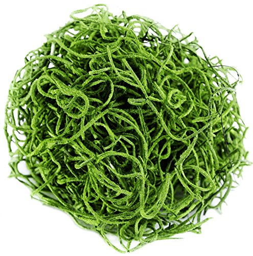 SuperMoss (26912) Spanish Moss Preserved, Grass, 8oz (200 cubic inch)