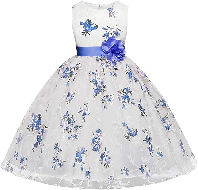 Vestiti Eleganti Bimba 3 Anni.Ankoee Bambina Filati Netti Ricamo Fiore Vestiti Da Cerimonia