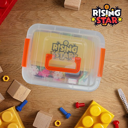 RisingStar Interlocking Brain Flakes - Plastic Disc Set for Cognitive Development - STEM Toys for Boys and Girls - 800 Pieces