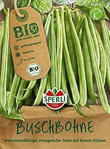 BIO-Buschbohne grün