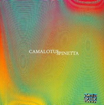 spinetta camalotus