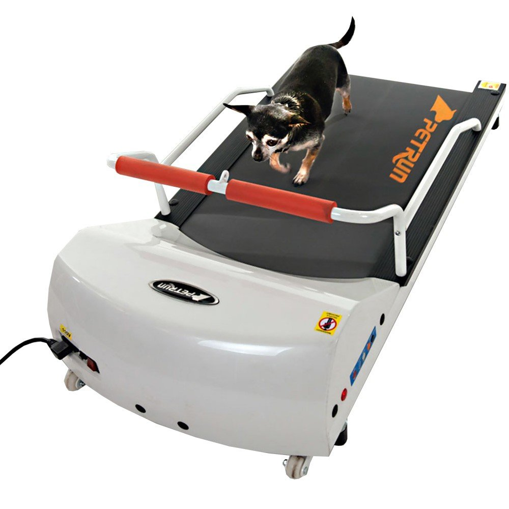 Go Pet Petrun Pr700 Dog Treadmill