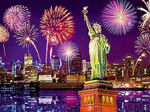 Jigsaw Piece 500 City (Fireworks at Night, NYC, New York City 500 pc Colorluxe Jigsaw Puzzle)