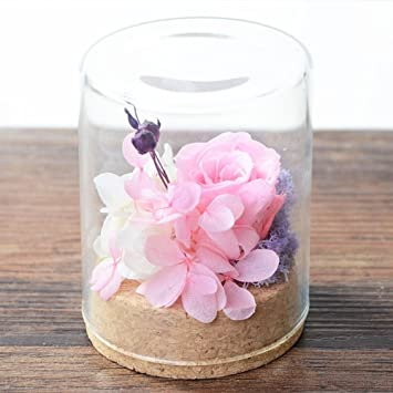Flor Inmortal Cristal/Mini,Hortensia,Frijoles Acacia,Flor ...