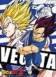 Great Eastern Entertainment Dragon Ball Z Vegeta Wall Scroll, 33 by 44-Inch