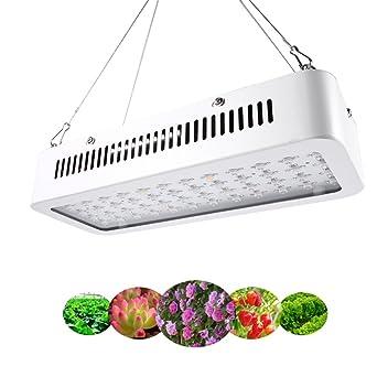 Led Semis Eclairage Lampe Horticole 60pcs Serre Pour Croissance 600w 3jLq5R4A