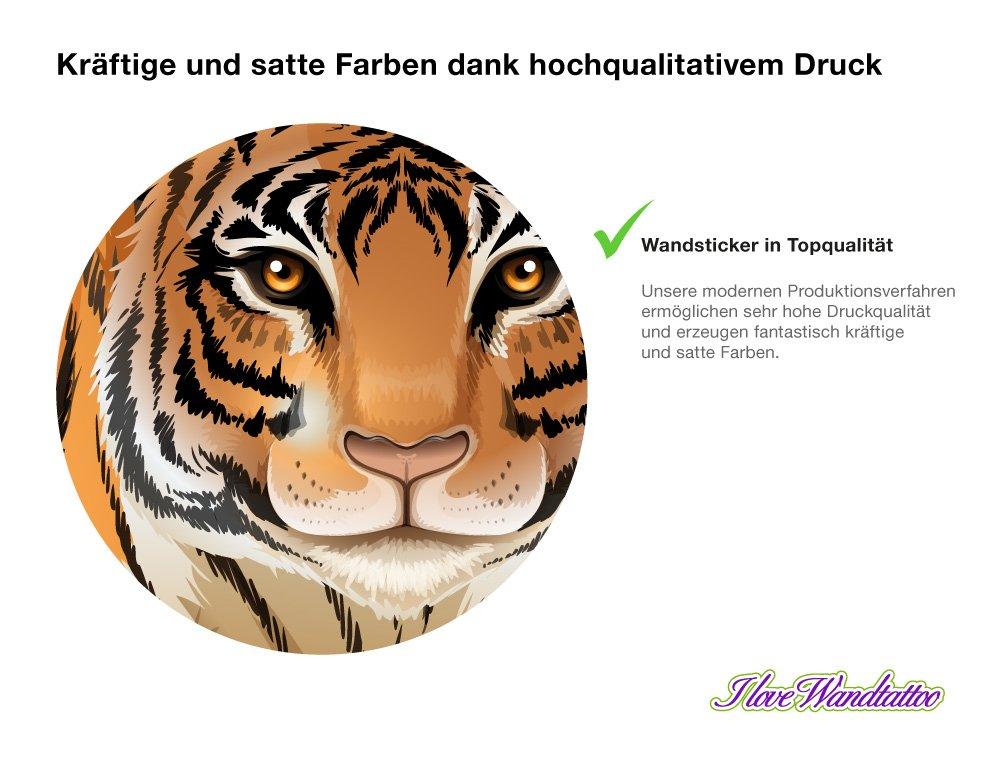 Großartig Tiger Muskelanatomie Zeitgenössisch - Anatomie Ideen ...