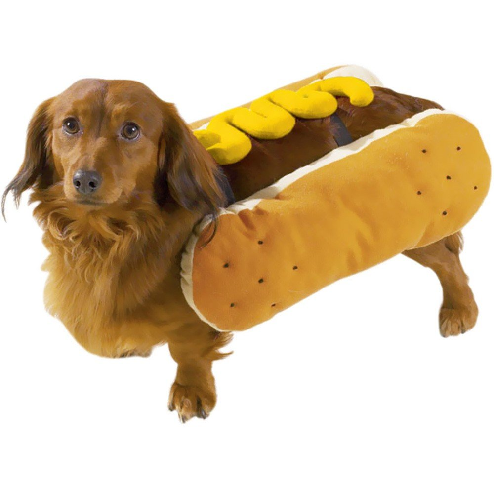 Casual Canine Hot Diggity Dog with Mustard Costume for Dogs, 12'' Small
