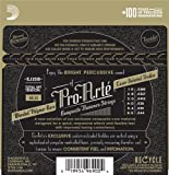 D\'Addario EJ25B Pro-Arte Black Nylon Composite Flamenco Guitar Strings