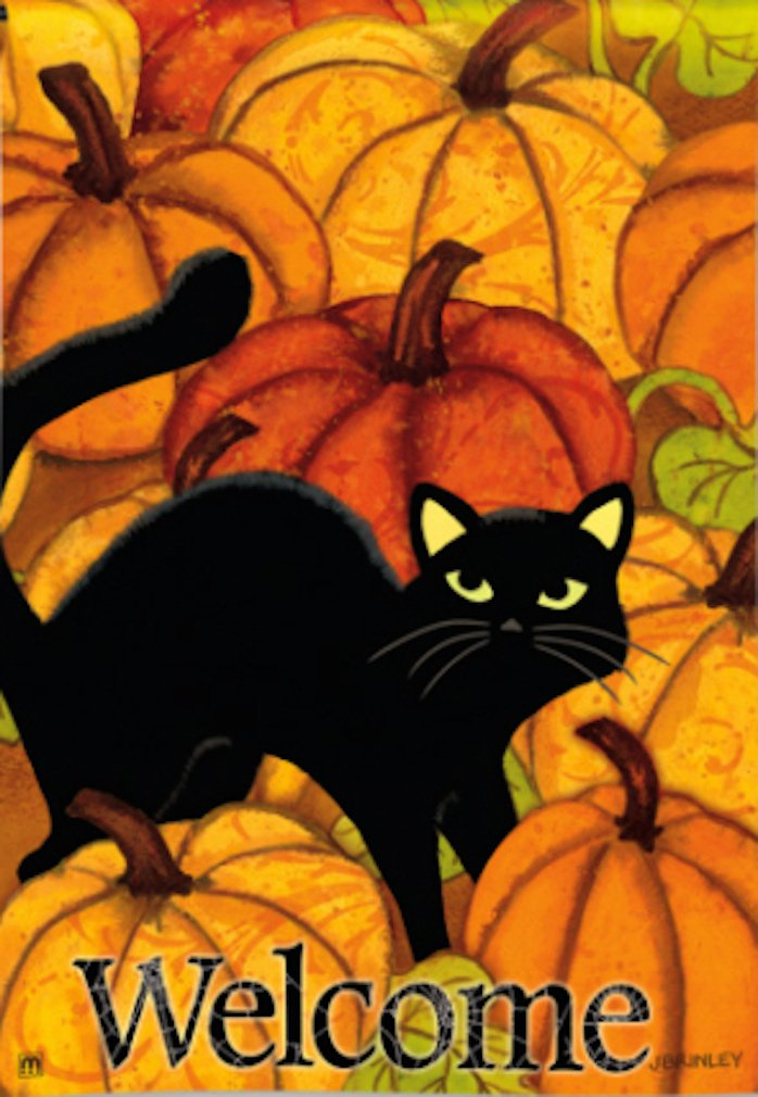 Black Cat in Pumpkin Patch Halloween Garden Flag