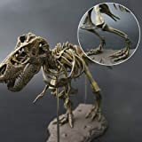 Hercugifts-DS 3D T-Rex Dinosaur Skeleton Model