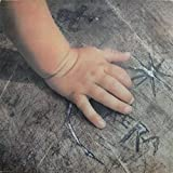 Aera - Hand Und Fuß - Erlkönig Schallplatten - INT 148.401