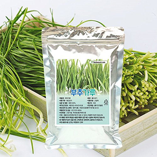 [Jeongwoodang]Korean Chives Root Powder 10.6oz/Great Source for Stamina/Super Food/Vitamin/Mineral/부추/韭菜 by Jeongwoodang
