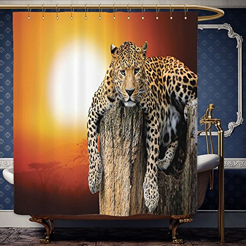 Wanranhome Custom-made shower curtain Safari Decor Leopard Sitting on Dry Tree at Sunset Danger in the Air Big Cat with Spotted Form Image Orange Brown For Bathroom Decoration 69 x - Galleria Map At Sunset