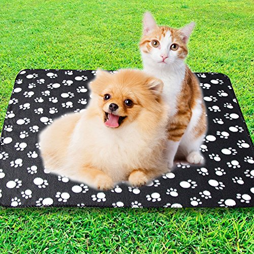 Eagmak Cute Dog Cat Fleece Blankets with Pet Paw Prints for Kitten Puppy and Small Animals Pack of 6 (black, brown, blue, grey, red and white) by Eagmak (Image #6)