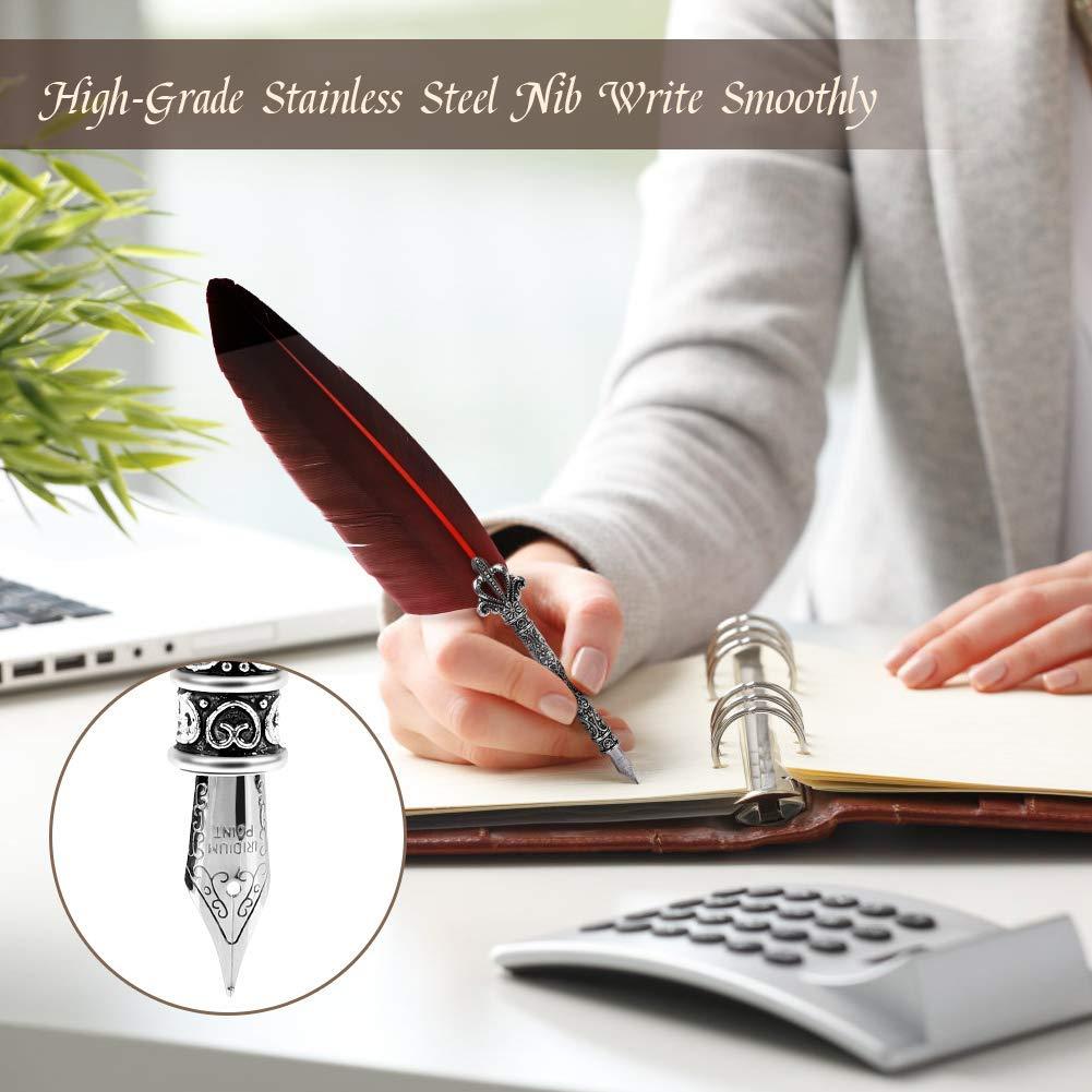 Ejoyous 0.5mm Stylo Dip /à Plume avec Pot dencre Gris R/étro Stylo de Calligraphie avec 5 Plumes de Rechange Stylo Plume Set Quill pour /Écriture ou Cadeau