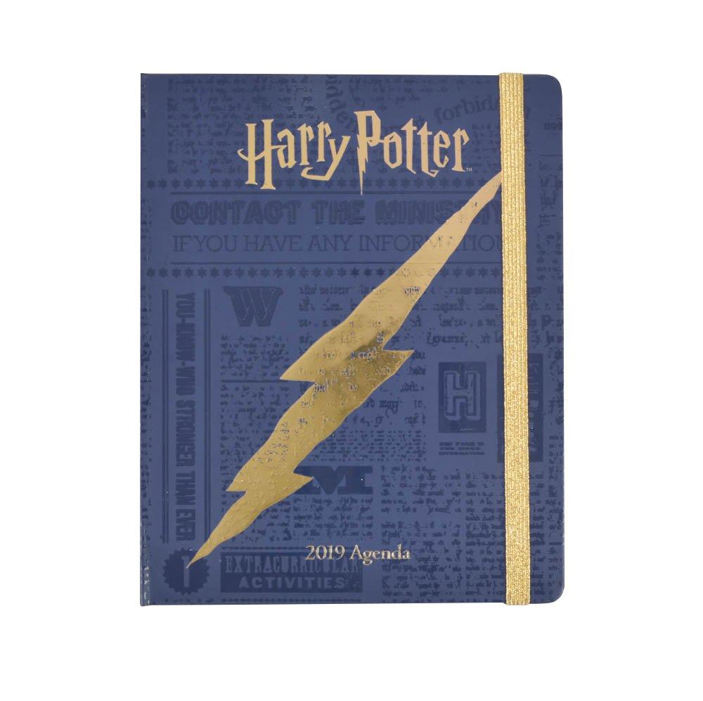 Grupo Erik Harry Potter - Agenda 16 Meses 2018/2019 Semana Vista ASVP1810
