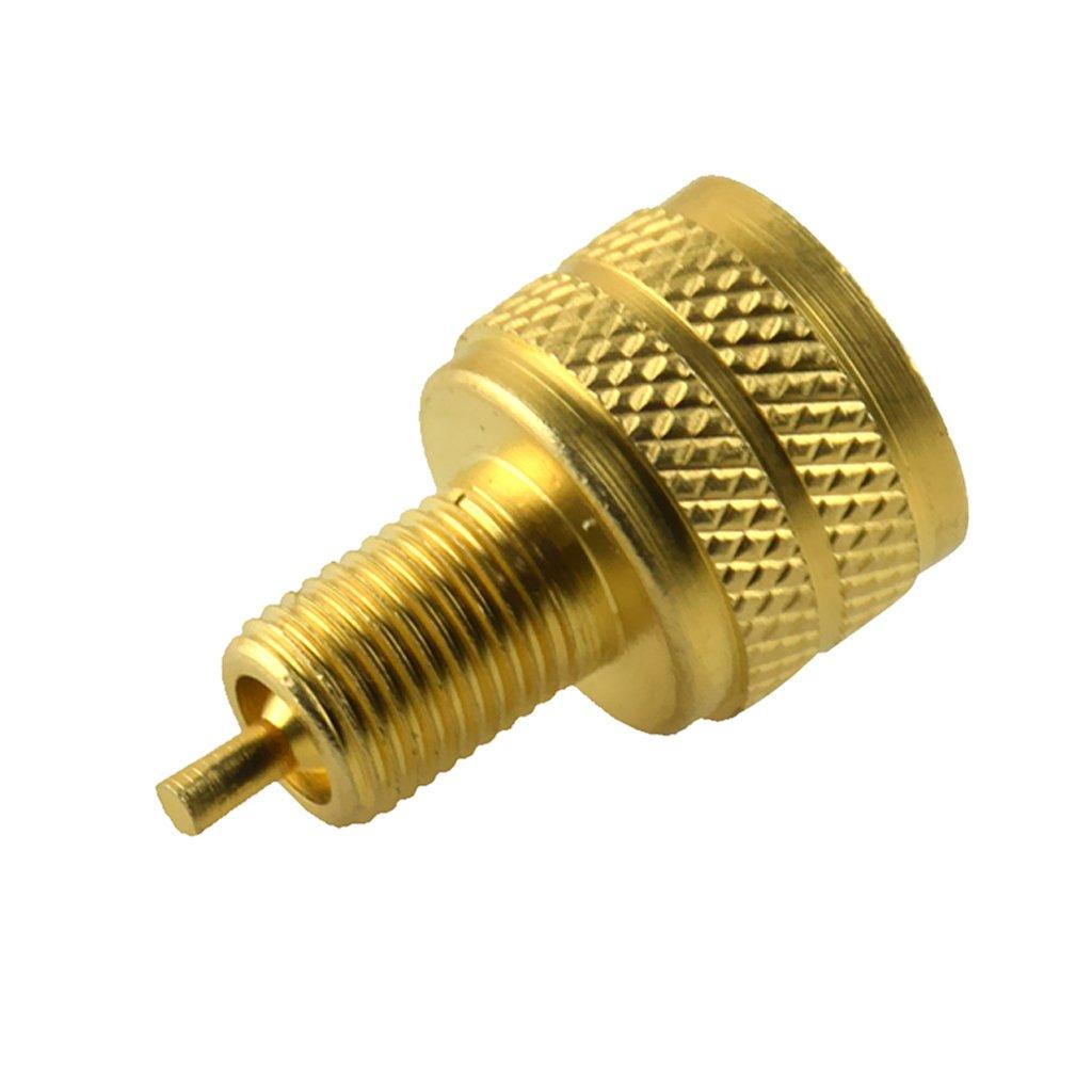 Shiwaki External Large To Standard Bore Valve Stem Adapter Brass