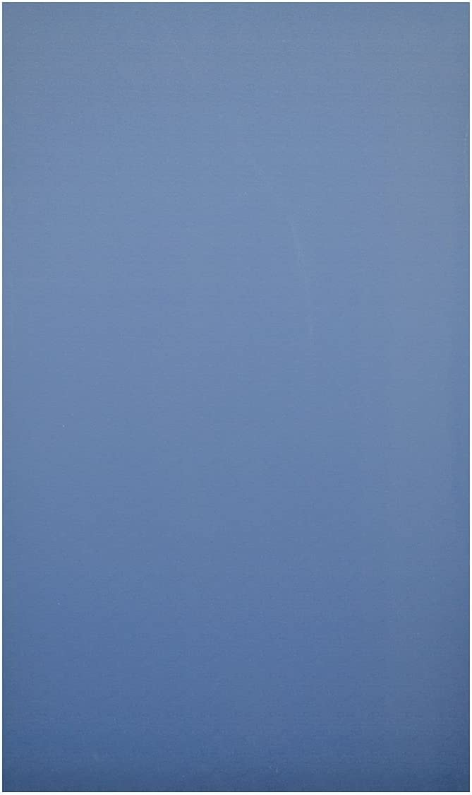 40-9082560-9509 Door Solid Plastic Polymer 26 W X 55 H Blue Global Steel