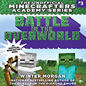 Battle in the Overworld   Winter Morgan