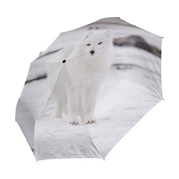 Ieararfre Arctic Fox - Paraguas Compacto de Viaje Resistente al Viento y al Viento, Impermeable
