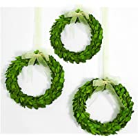 BoxwoodValley Boxwood Wreath Packs Mini 15cm Preserved Round Boxwood Wreath, Door Wall Hanging Window Wedding Party…