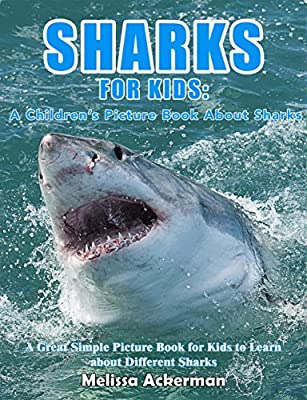Sharks For Kids: A Children's Picture Book About Sharks: A Great Simple Picture Book for Kids to Learn about Different Sharks