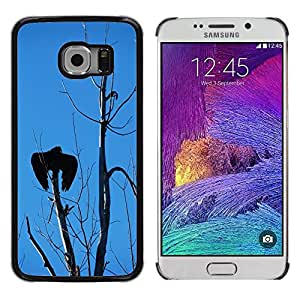 Etui Housse Coque de Protection Cover Rigide pour // M00129508 Buitre de Turquía, Árbol, Cielo Sombra // Samsung Galaxy S6 EDGE (Not Fits S6)