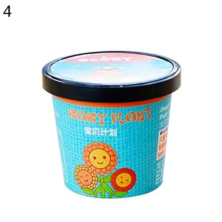 Ukallaite Mini Cute Potted Bonsai Office Desktop Tomato Sunflower Plant Seed Starter Kit 1#