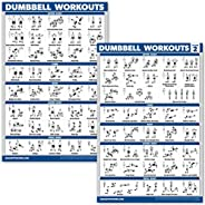 QuickFit 2 Pack Dumbbell Workout Exercise Posters - Free Weight Body Building Exercise Charts - 18 x 27 Inches