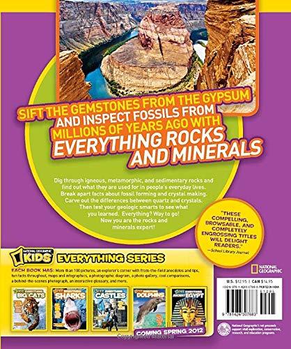 Buy rock tumbler reviews