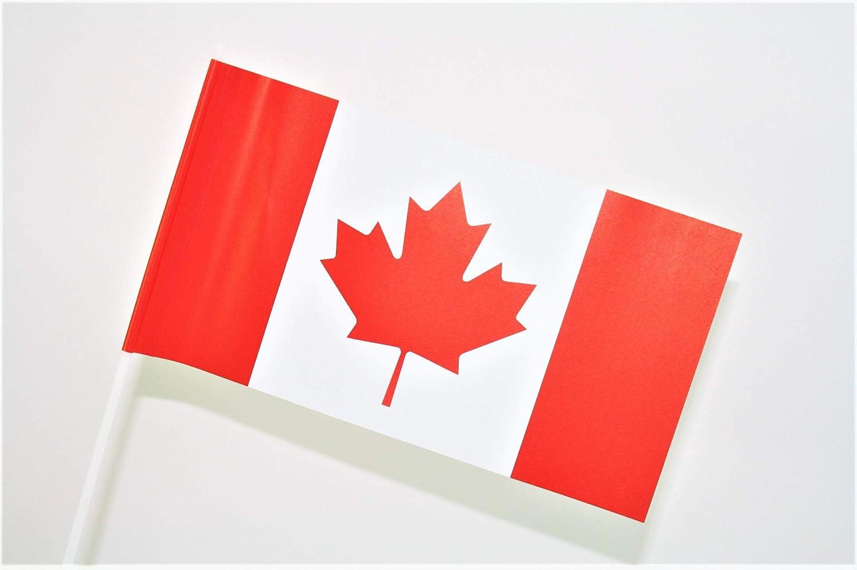 TrendLineMix 10 St/ück Kanada F/ähnchen Fahnen 12 x 24 cm Plastik Stab Papier Nordamerika Staaten Papierf/ähnchen