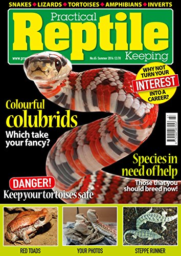 Practical Reptile Keeping - Summer 14 (Rat Snake Care)