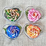 Autumn Colors Flower Set of 4 Hand Carved Decorative Soaps with Jasmine Aroma Essential Oil, Handmade Flower Soap Carving by Thai Artisan