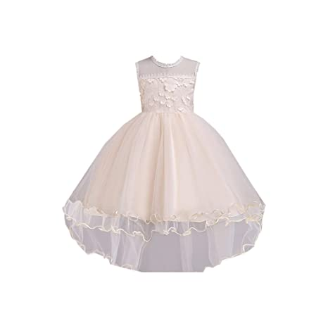 16d489bde0c8 Image Unavailable. Image not available for. Color  New Summer Baby Girls  Party Dress Evening Wear ...