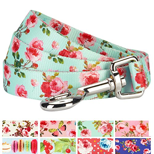 Rose Leather Dog Leash (Blueberry Pet New Durable Spring Scent Inspired Floral Rose Print Turquoise Dog Leash 5 ft x 3/4