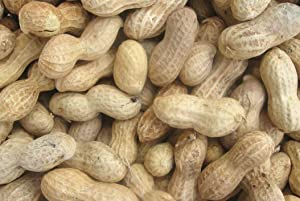 Backyard Seeds Peanuts in-Shell for Squirrels, Deer and Blue Jays 25 Pounds