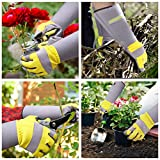 Jardineer Rose Gloves & Trimming Scissors