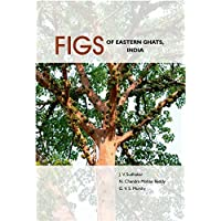 Figs Of Eastern Ghats