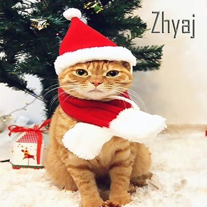 Zhyaj Gorros de Gato para Perro Lindo Sombrero de Papá Noel ...