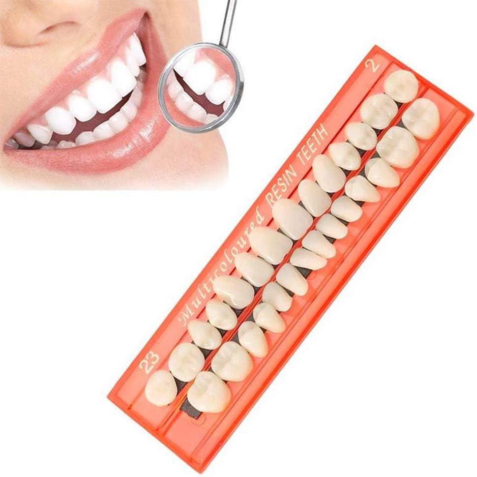28 Pezzi//Set Modello di Denti in Resina Materiali dentali durevoli Protesi dentali Guida Colori dei Denti Modello Denti Teach Rsoamy Protesi Dentarie