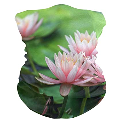 Amazoncom Lotus Flower Beautiful Summer Headband Womens Bandana