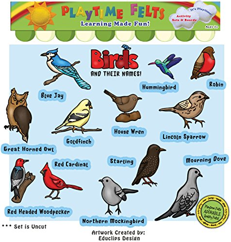 Playtime Felts Birds and Their Names Felt Set for Flannel Board