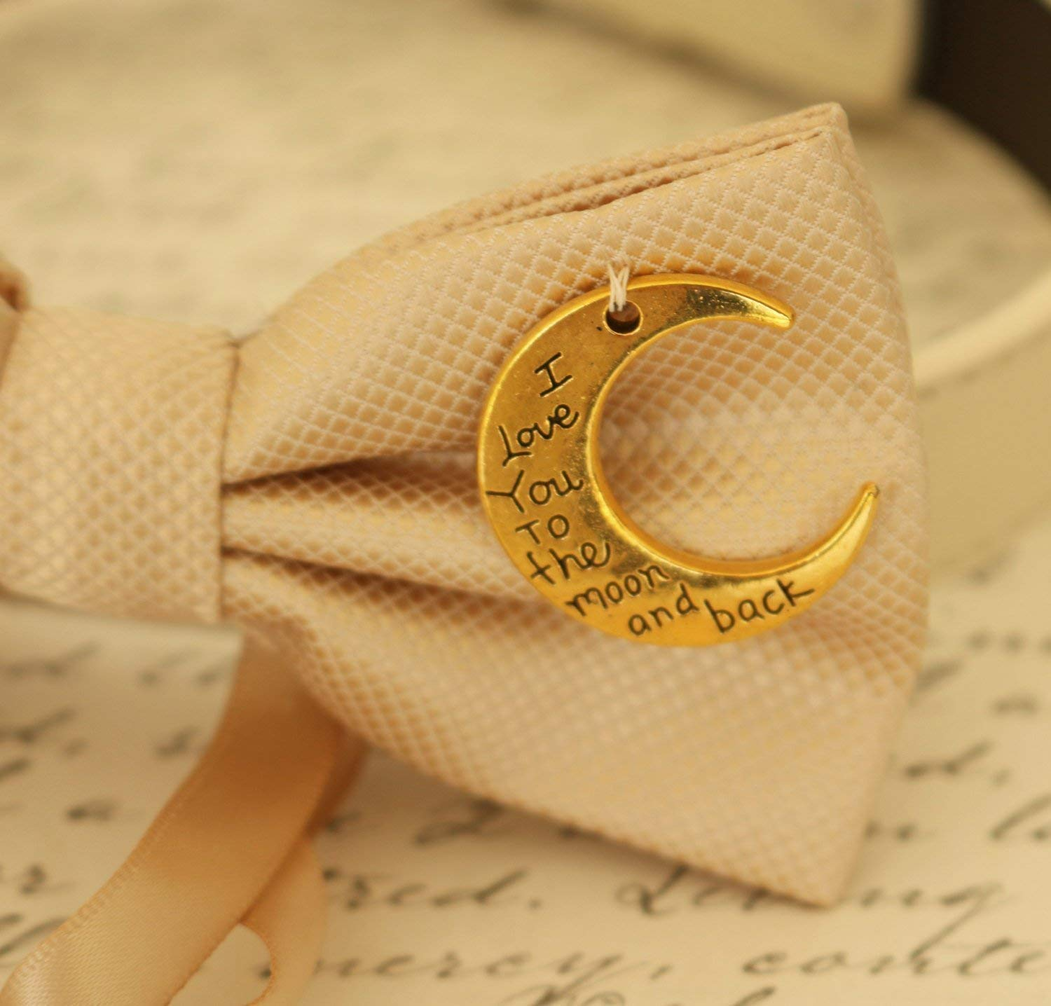 Ring Bearer Pets Wedding I love you to the moon and back Gold Charm Pet wedding Proposal Champagne Dog Bow Tie collar