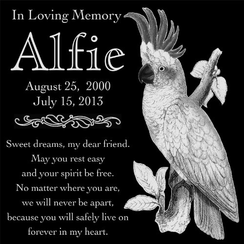 Personalized Cockatoo Bird Pet Memorial 12''x12'' Engraved Black Granite Grave Marker Head Stone Plaque ALF1 by Lazzari Collections