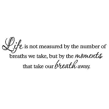 Amazoncom Vwaq Vwaq 30806 Life Is Not Measured By The Number