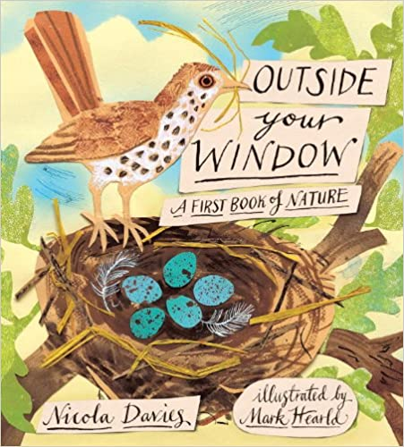 Outside Your Window: A First Book Of Nature Free Download
