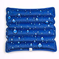 NERLMIAY Cool Ice Pillows Cushion,Water Filling Ice Cushion Chair Pad,Pet Cushion...