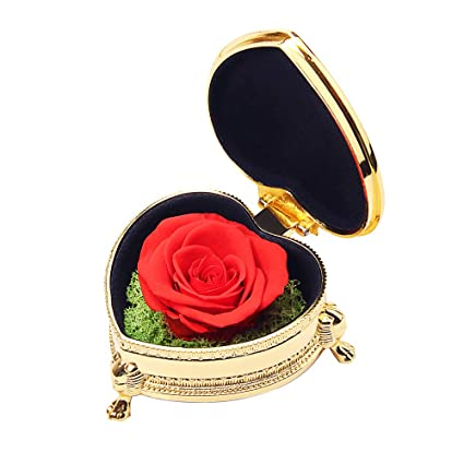 Best Gifts For Women Preserved Flower Rose Never Withered Roses Upscale Immortal Flowers