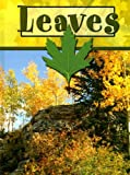Leaves, Lynn Stone, 1600445535